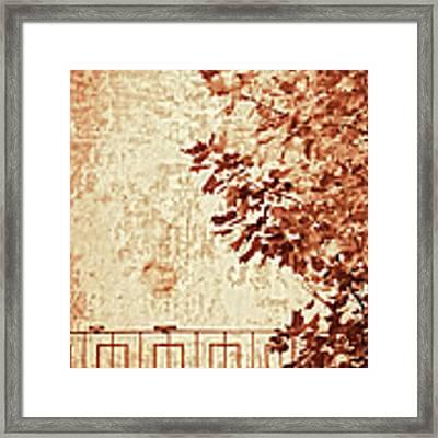Fall II Framed Print by Silvia Ganora
