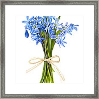 Blue Wildflower Bouquet Framed Print