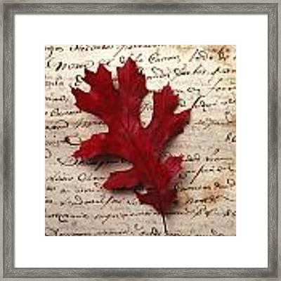 Leaf On Letter Framed Print by Garry Gay