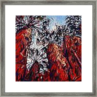 Red Borrego Palms Framed Print