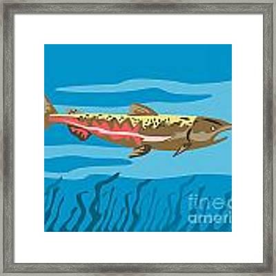 Trout Fish Retro Framed Print by Aloysius Patrimonio