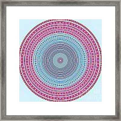 Vintage Color Circle Framed Print
