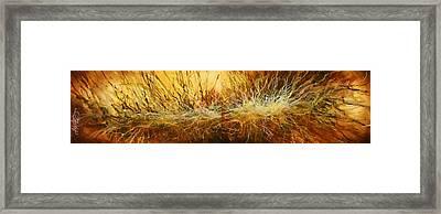 ' Reach ' Framed Print by Michael Lang