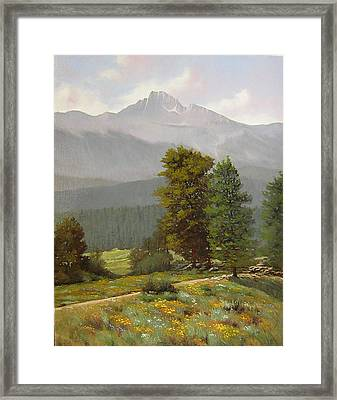060812-1418  As Carefree As The Flowers In The Fields  Framed Print by Kenneth Shanika