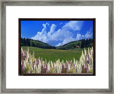 Framed Print featuring the photograph  A Beautiful View by Bernd Hau