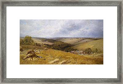 A Hot Day In The Harvest Field Framed Print