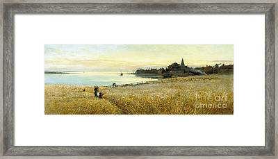 Across The Cornfields Framed Print