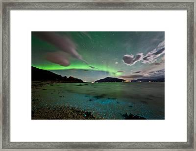 Auroras And Dinoflagellates Framed Print