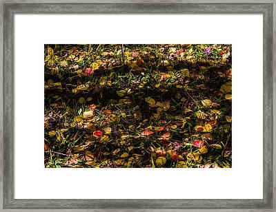 Autumn's Mosaic Framed Print