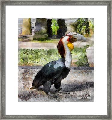 Bird Rhinoceros Hornbill Framed Print by Sergey Lukashin