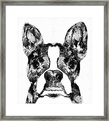 Boston Terrier Dog Black And White Art - Sharon Cummings Framed Print