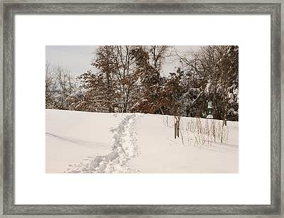 Christmas Snow Trail Framed Print