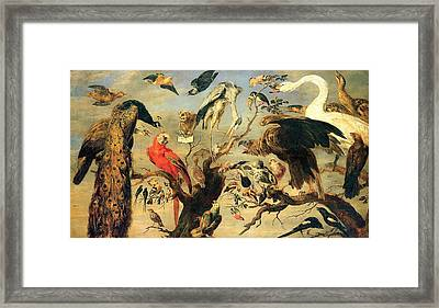 Concert Of Birds Framed Print by Pg Reproductions