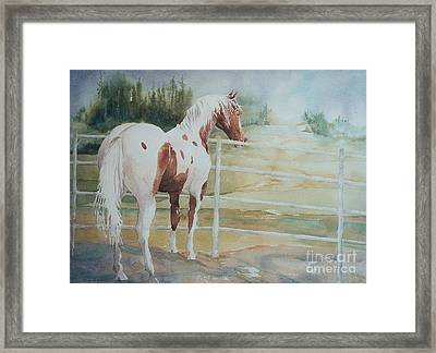 Contemplating Freedom Framed Print