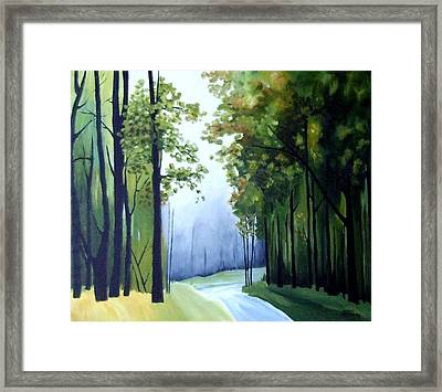 Country Road Framed Print by Carola Ann-Margret Forsberg