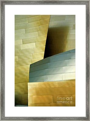 Disney Concert Hall 8 Framed Print by Micah May