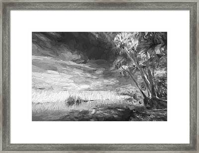 Every Other Tree II Framed Print by Jon Glaser