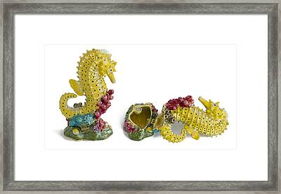 Fish Sea Horse - Metal  Box For Jewelry Framed Print by Aleksandr Volkov