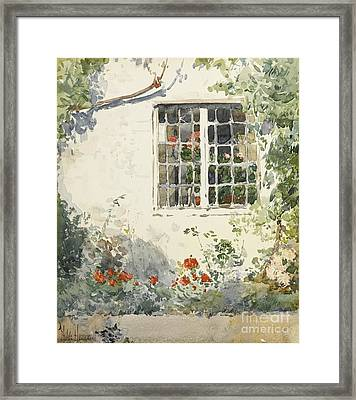 Flowers Against A White Wall Framed Print by Celestial Images