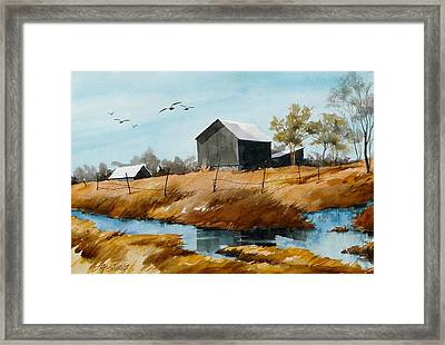Flying 'n Flowing Framed Print by Art Scholz