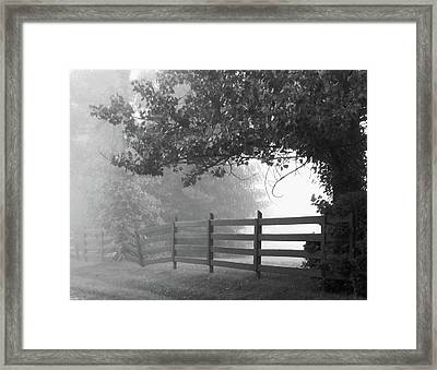 Fog At Dawn Framed Print by Ann Bridges