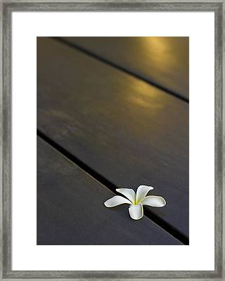 Framed Print featuring the photograph  Forever And Ever by Prakash Ghai