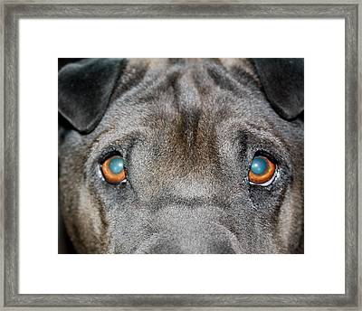 Gandalfs Eyes Framed Print