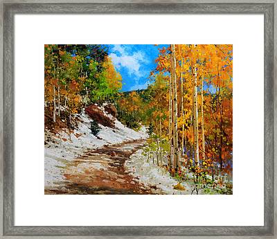Golden Aspen Trees In Snow Framed Print