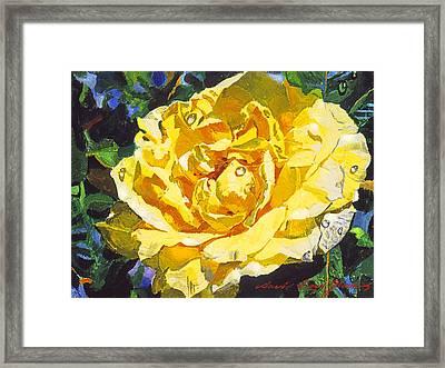 Golden Rain Framed Print by David Lloyd Glover