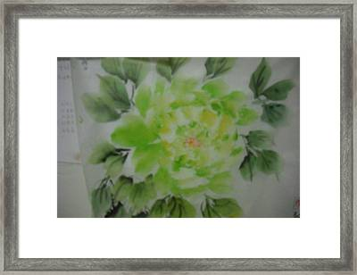 Green Peony004 Framed Print by Dongling Sun