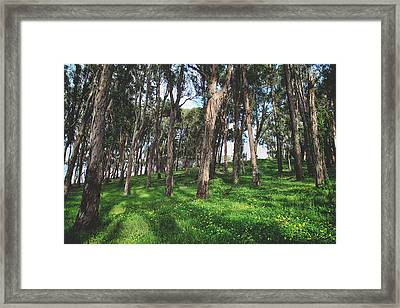 Hand In Hand We'll Go Framed Print by Laurie Search