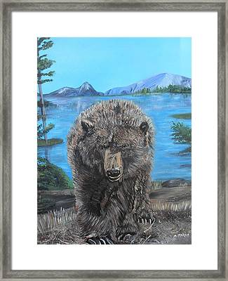 Hello Grizzley Bear Framed Print