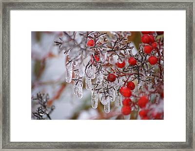 Holiday Ice Framed Print
