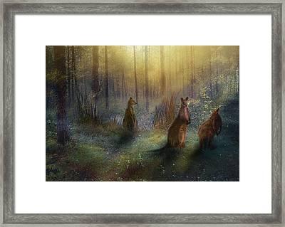 Hush Framed Print by Trudi Simmonds