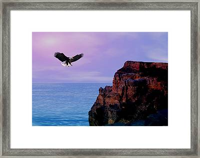 I'm Free To Fly Framed Print by Evelyn Patrick