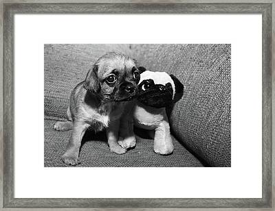 Just Like Me Framed Print by Monte Arnold