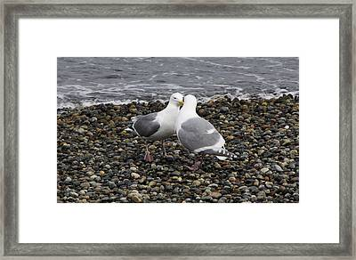 Kiss Framed Print by Sergey  Nassyrov