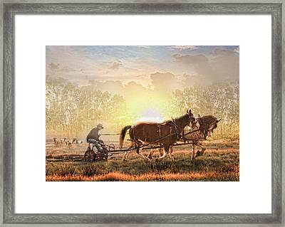 Life In The Sun Framed Print by Trudi Simmonds