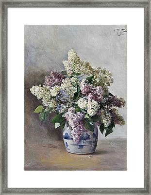 Lilacs In A Pot Framed Print by MotionAge Designs