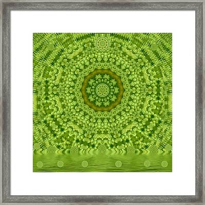 Love The Wild  Lilies If It Is Winter Framed Print