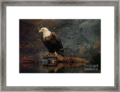 Magestic Eagle  Framed Print