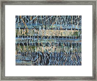 Mangrove Swamp Framed Print by Christopher Chua