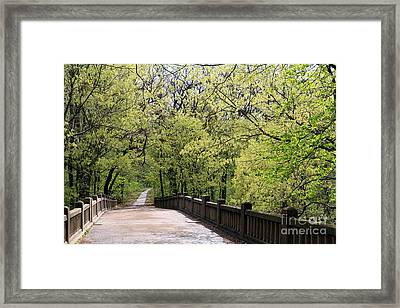 Framed Print featuring the photograph  Matthiessen State Park In Spring by Paula Guttilla