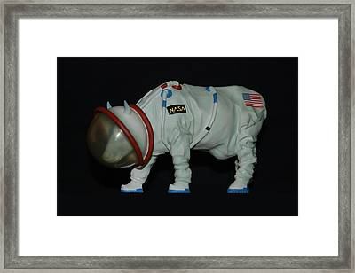 Maurice The Space Cow Boy Framed Print by Rob Hans