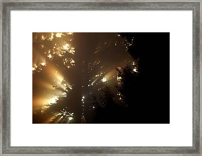 Morning Framed Print by Sergey  Nassyrov
