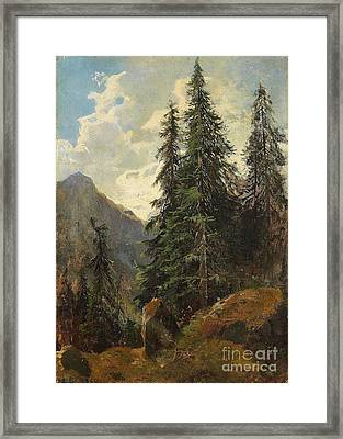 Mountain Landscape With Pines Framed Print