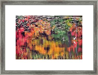 New England Reflections Framed Print by Betty LaRue