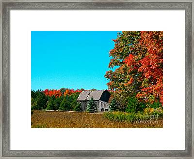 Old Barn In Fall Color Framed Print by Robert Pearson
