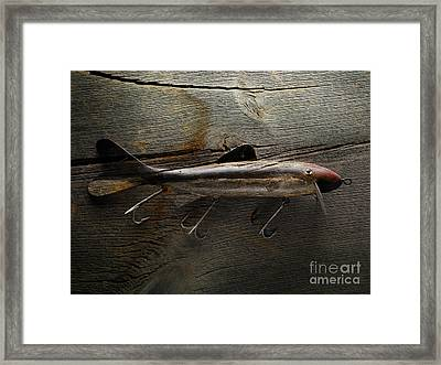 Old Muskie Lure Framed Print by Paul Lecat