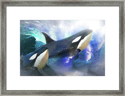 Orca Wild Framed Print by Trudi Simmonds